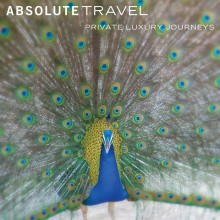 Book your next Adventure with Absolute Travel
