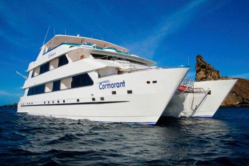 cormorant-cruise