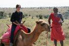 How about a camel safari?