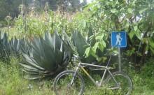 Mountain Biking and Mezcal in Oaxaca - Adventure Travel Photos