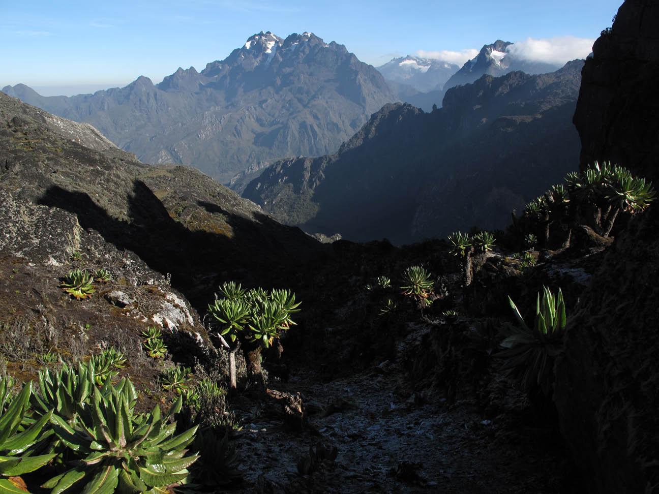 Rwenzori Mountains, Uganda