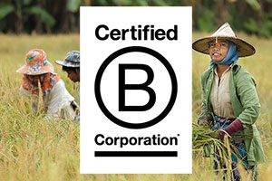 better places travel b corp